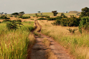Путешествие по Кении, Африка