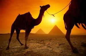 Незабываемые впечатления от поездки в Египет